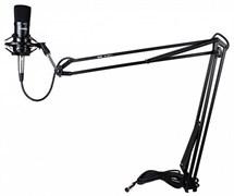 Стойка для студийного микрофона TOREX MS-RADIO-2 фото 1