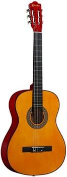 гитара для начинающих, гитара нейлоновые струны, классическая гитара