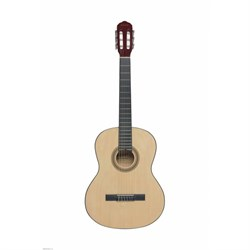 Классическая гитара TERRIS TC-390A NA - фото 23027