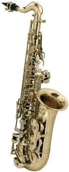 ROY BENSON AS-201 альт саксофон - фото 24014