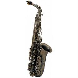 ROY BENSON AS-202A Es-ALT саксофон - фото 24018