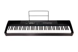 Ringway RP-25 Цифровое фортепиано - фото 25242