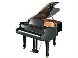SAMICK NSG158D/EBHP рояль акустический, цвет черный - фото 25787