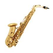 BRAHNER AS405B саксофон альт Eb, полный комплект