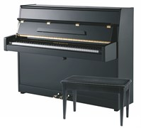 Sam Martin UP110B Акустическое пианино