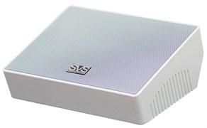 SVS Audiotechnik WSL-502 Громкоговоритель настенный для фонового озвучивания, 20 Вт