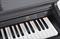 Цифровое пианино Artesia DP-3 - фото 6